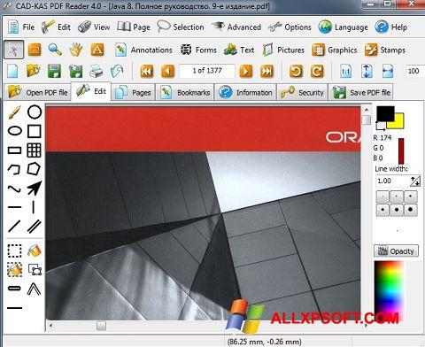 Screenshot PDF Reader Windows XP