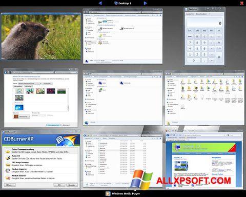 Screenshot Dexpot Windows XP