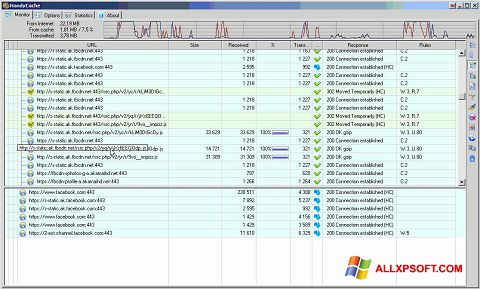 Screenshot HandyCache Windows XP