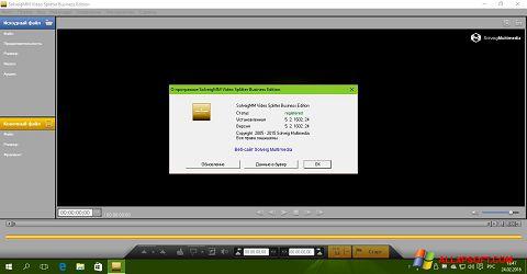 Screenshot SolveigMM Video Splitter Windows XP