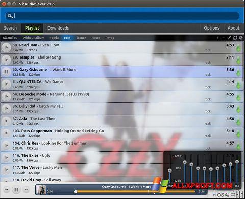 Screenshot VkAudioSaver Windows XP