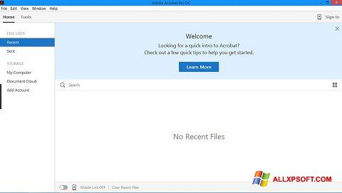 Screenshot Adobe Acrobat Pro Windows XP